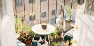 Niezależnie od tego, czy balkon znajduje się na parterze, czy na 10-tym piętrze, najlepsze rośliny na balkon mogą sprawić, że przestrzeń zewnętrzna będzie przytulna i urocza!