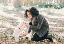Psy doświadczają dużej części otaczającego ich świata poprzez zmysł węchu, dlatego warto do ich treningu wprowadzić gry zapachowe dla psów.